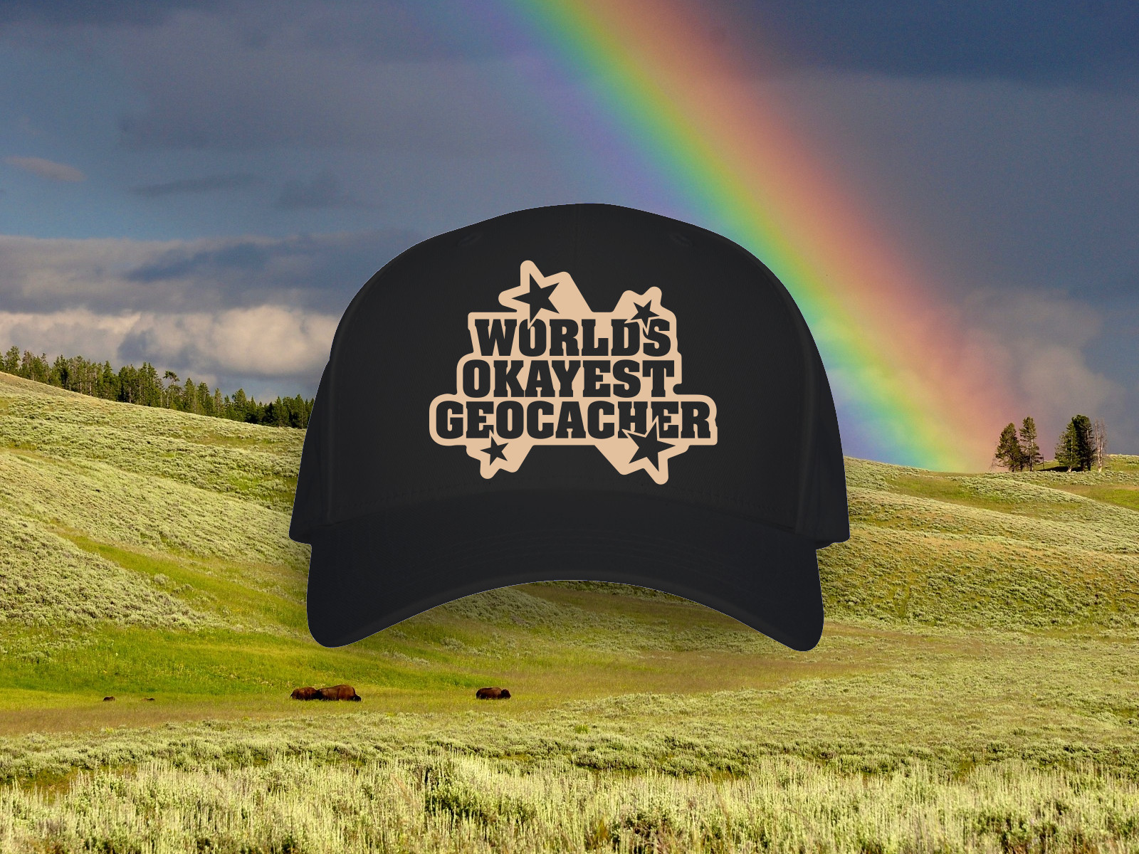 Worlds Okayest Geocacher Hat